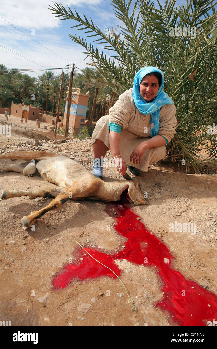 BERBER WOMAN FROM THE VILLAGE OF AMZROU KILLING A GOAT FOR THE EID