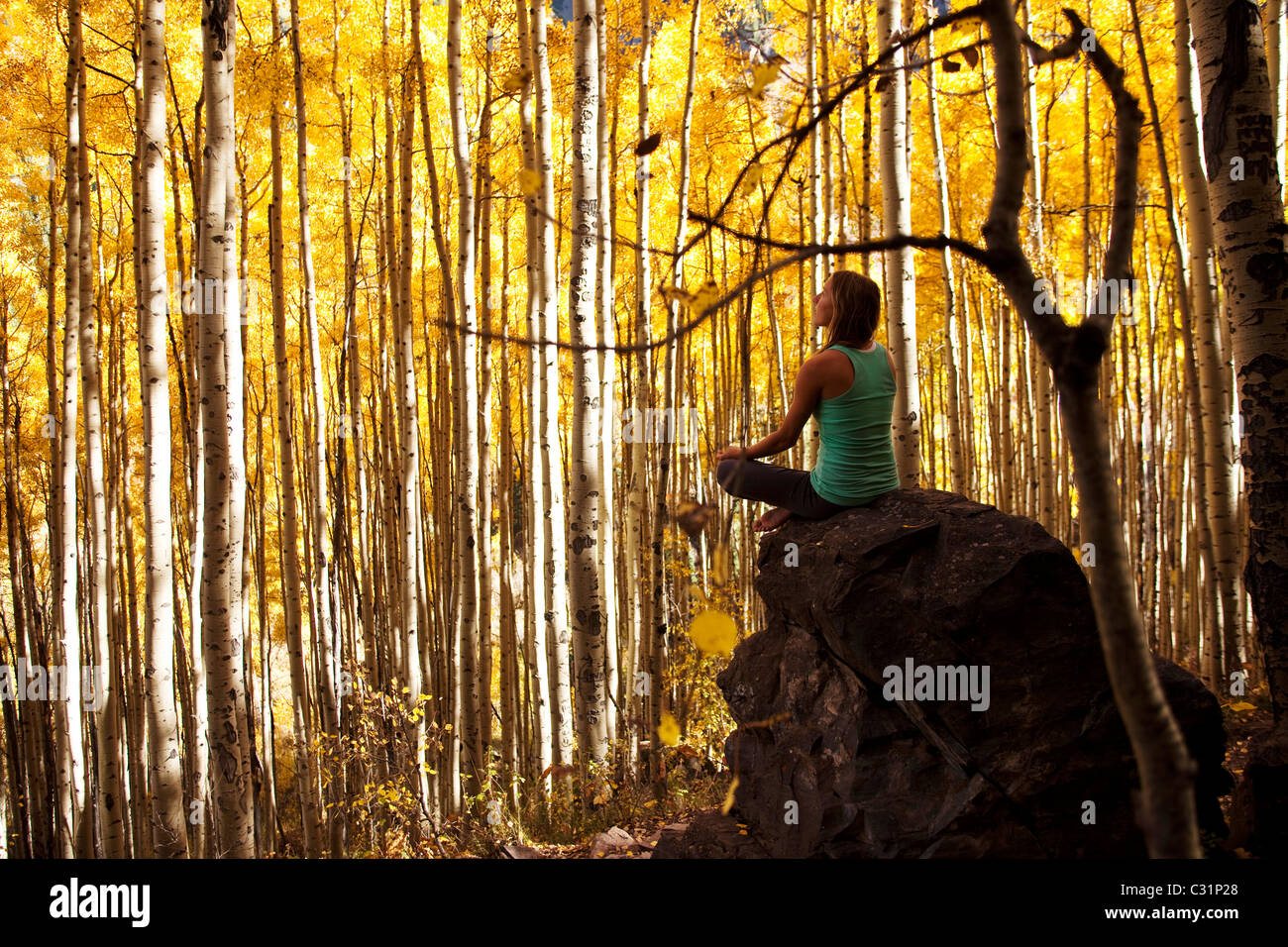 A young woman meditates peacefully on a rock in the midst of a sea of gold leaves. Stock Photo