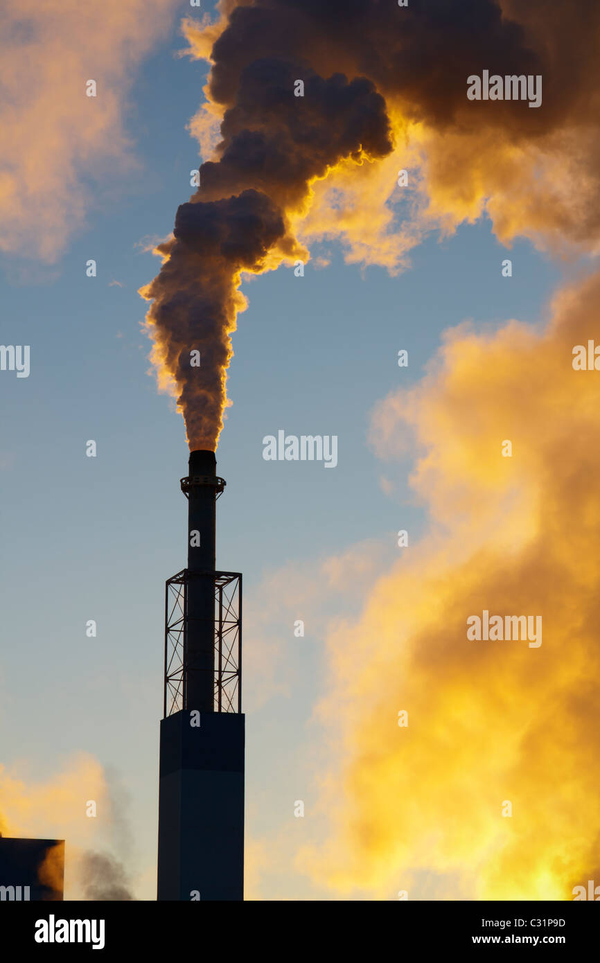 An industrial smokestack at a paper mill billows smoke into early morning light. - Stock Image