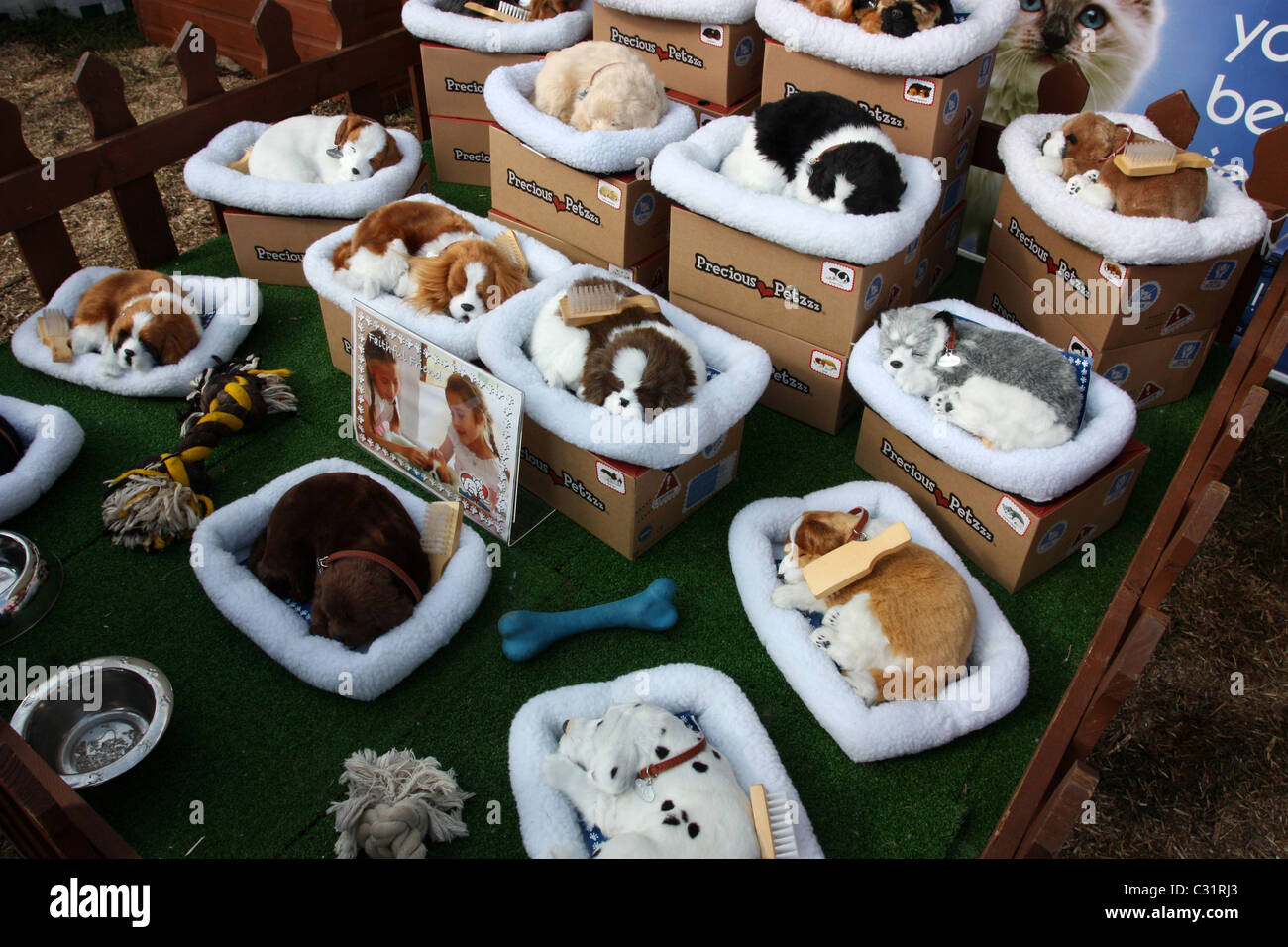 Toy Dogs - Stock Image