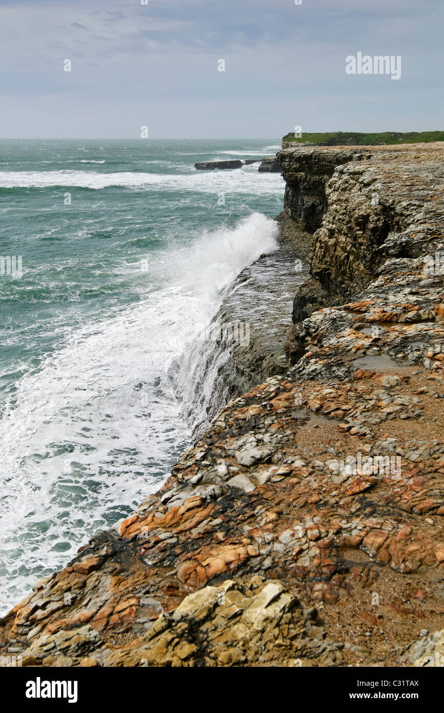 Dramatic views of the coastal bluffs of Wilder Ranch State Park in Santa Cruz. - Stock Image