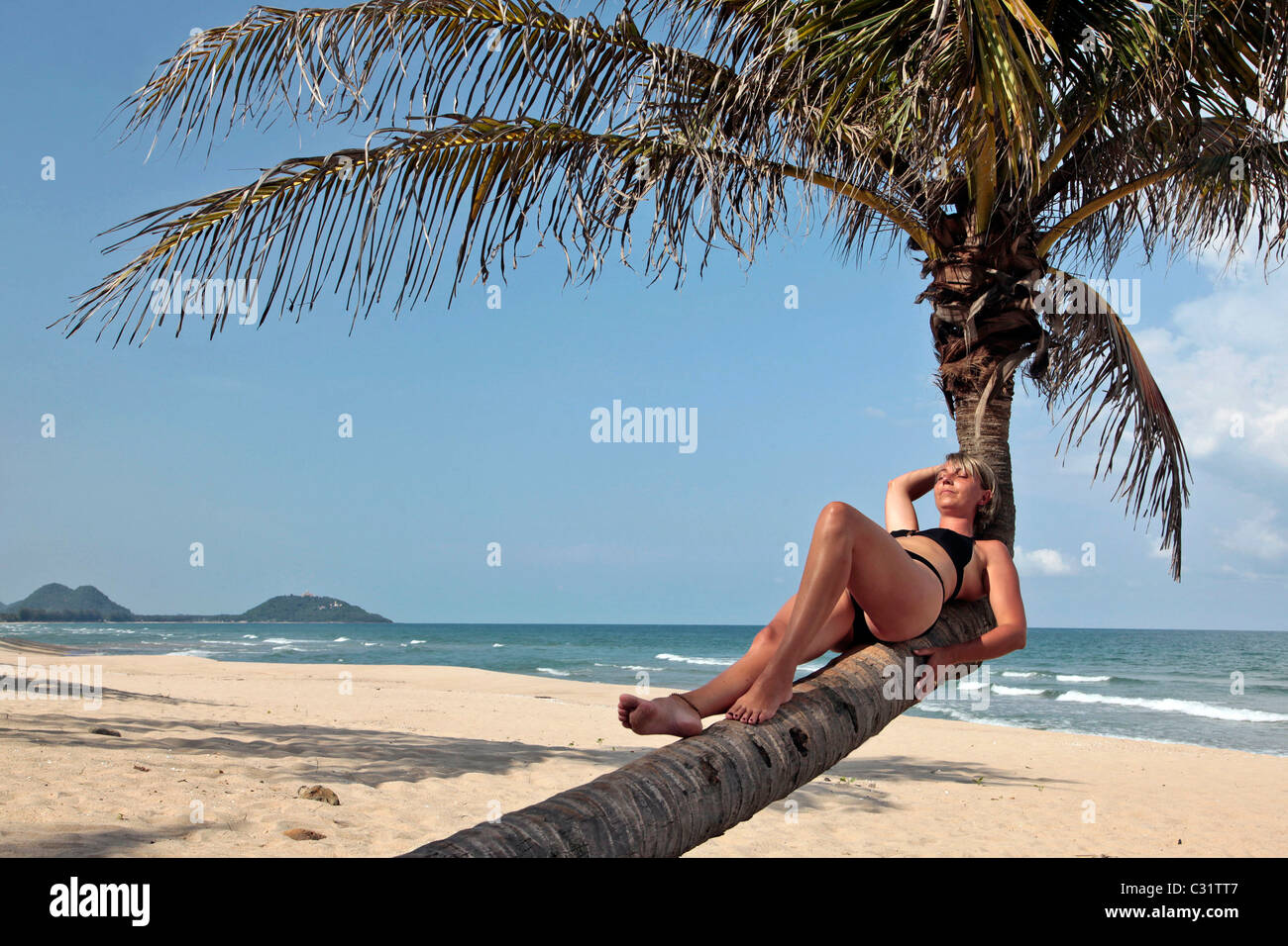 woman at the beach under a coconut tree stock photos woman at the