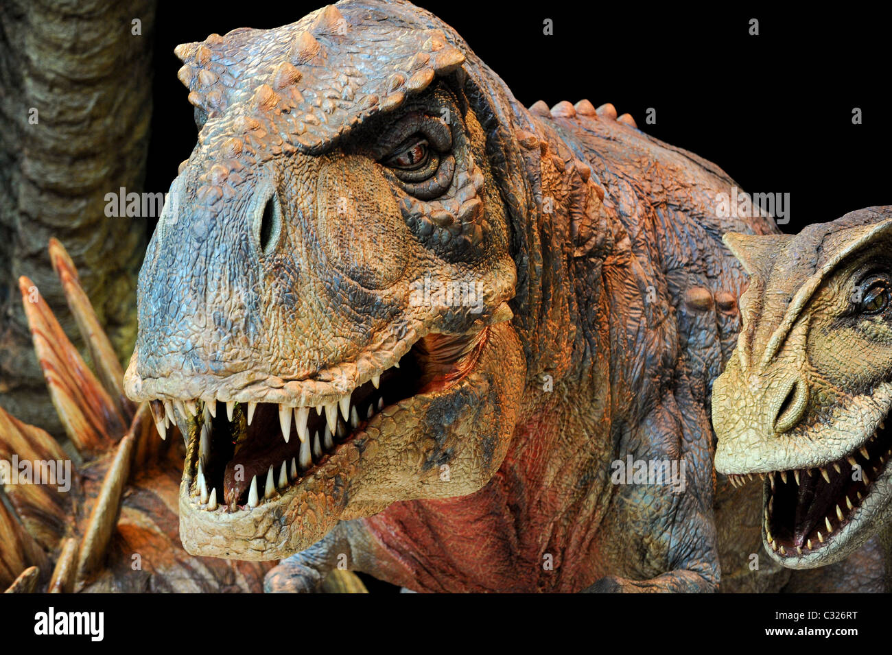 The all-star cast of 'Walking With Dinosaurs' at the 02, 5th August 2009. - Stock Image