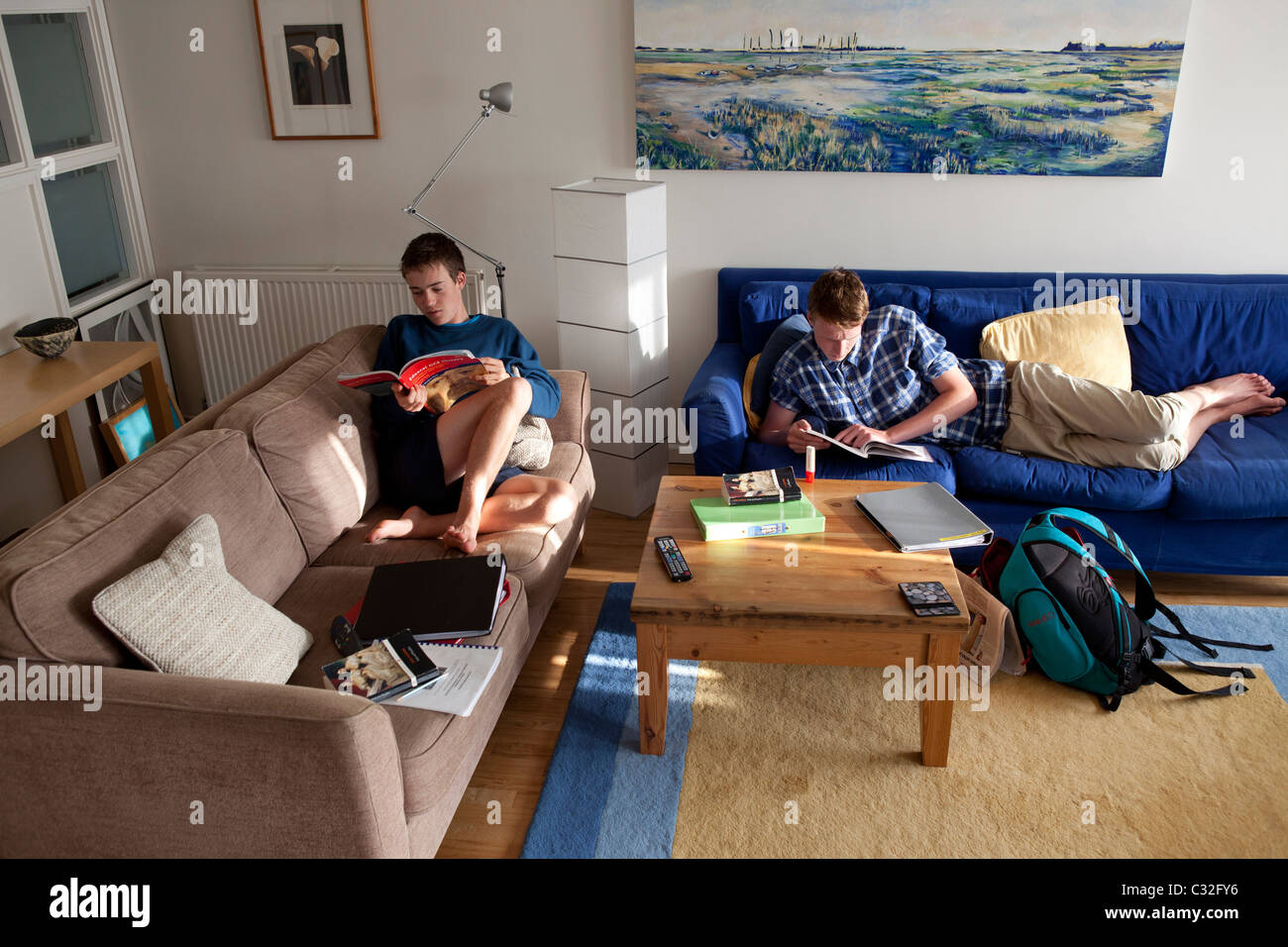 Teenage boys revising at home for A levels - Stock Image