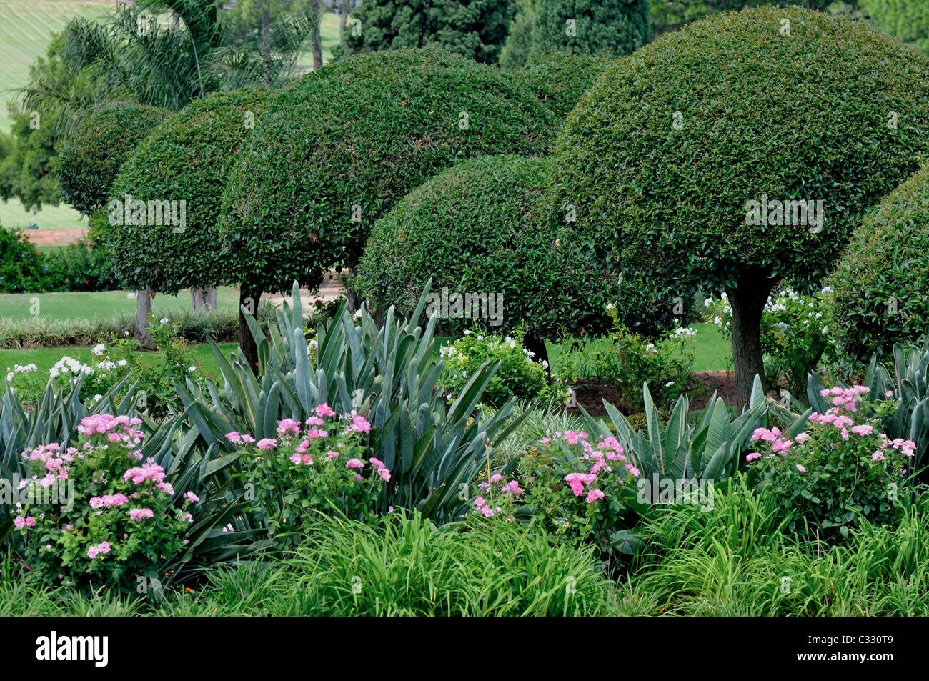 Beautiful Gardens by the Pretoria Union Buildings in South ...