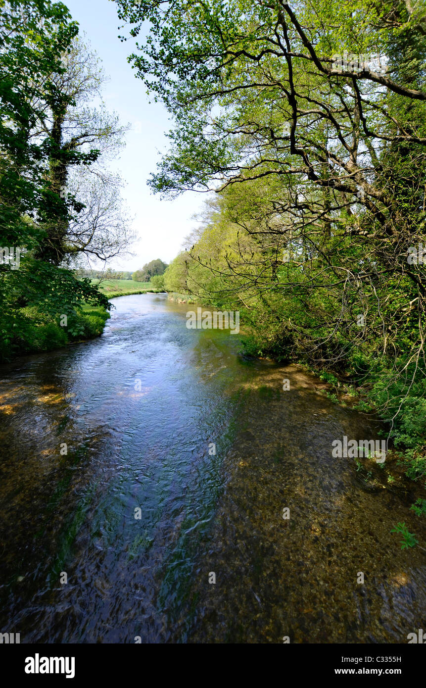 river test from the test way pathway - Stock Image