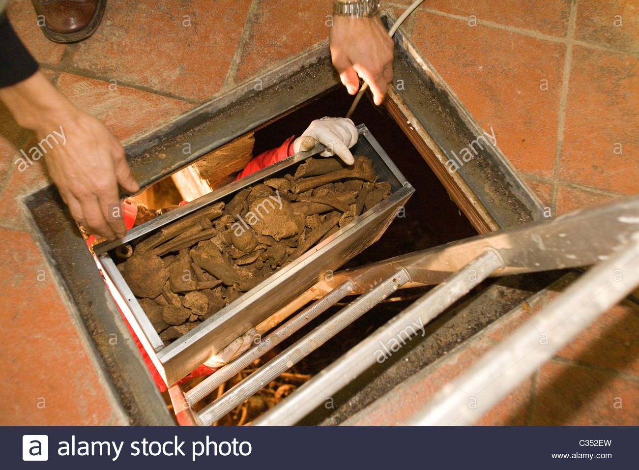 caravaggio committee,bones from the cemetery where caravaggio was buried,porto ercole,tuscany - Stock Image