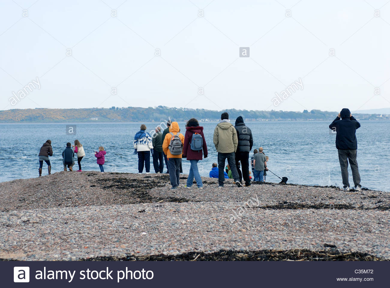 Chanonry Point Fortrose Black Isle, Ross and Cromarty, Scotland, UK People gather to spot dolphins feeding in the - Stock Image