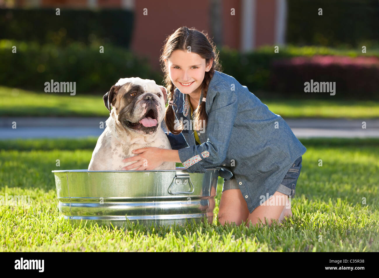 A pretty young girl washing her her pet dog, a bulldog, outside in a metal bath tub - Stock Image