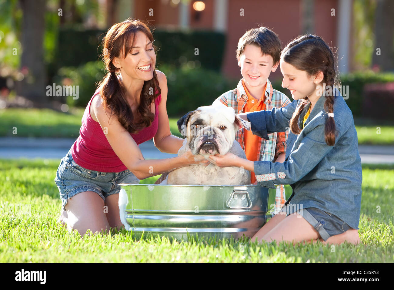 A beautiful mother, son and daughter family washing their pet dog, a bulldog outside in a metal bath tub. - Stock Image