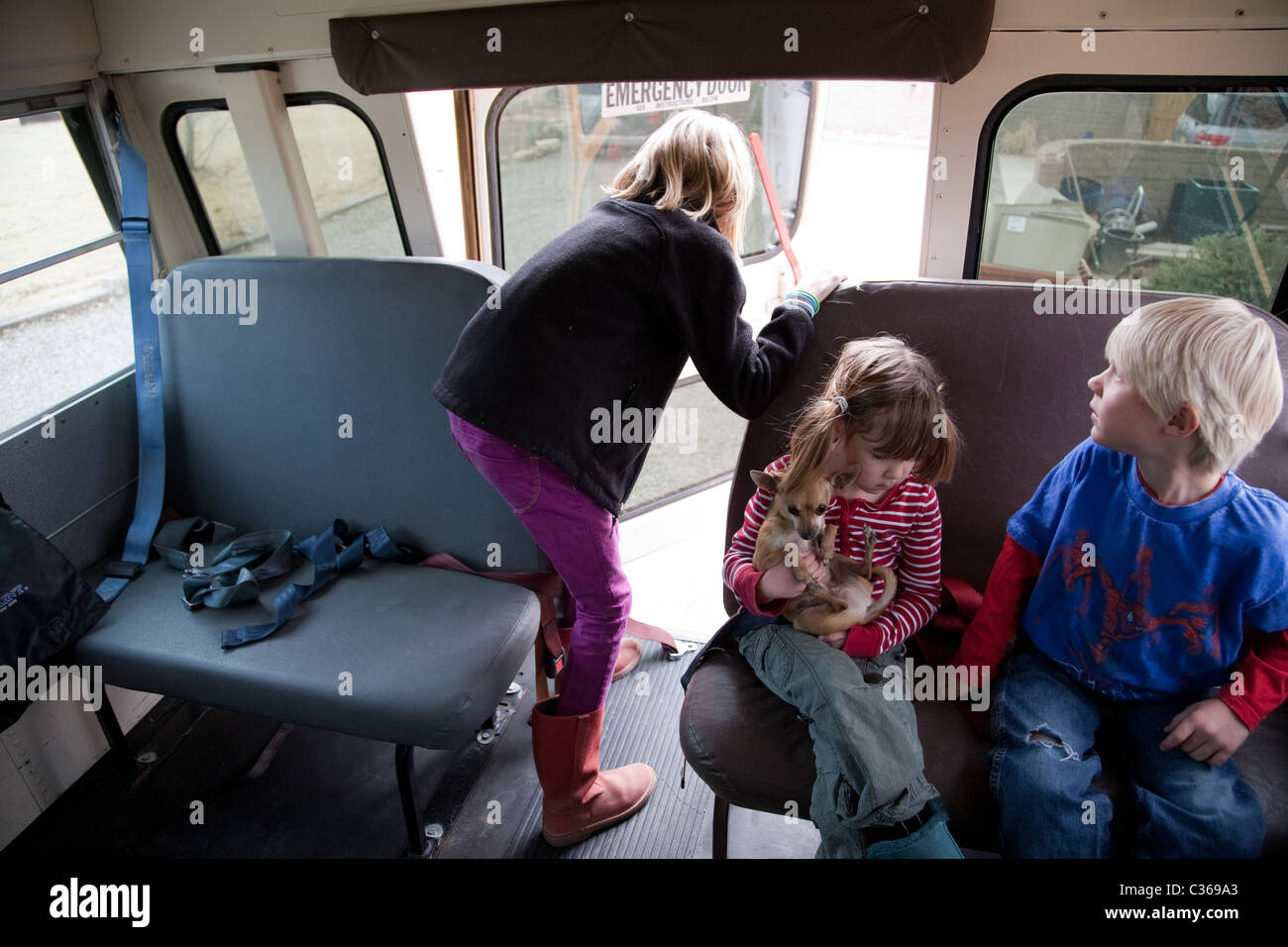 Children Exiting A School Bus Girl Holding A Chihuahua Stock Photo