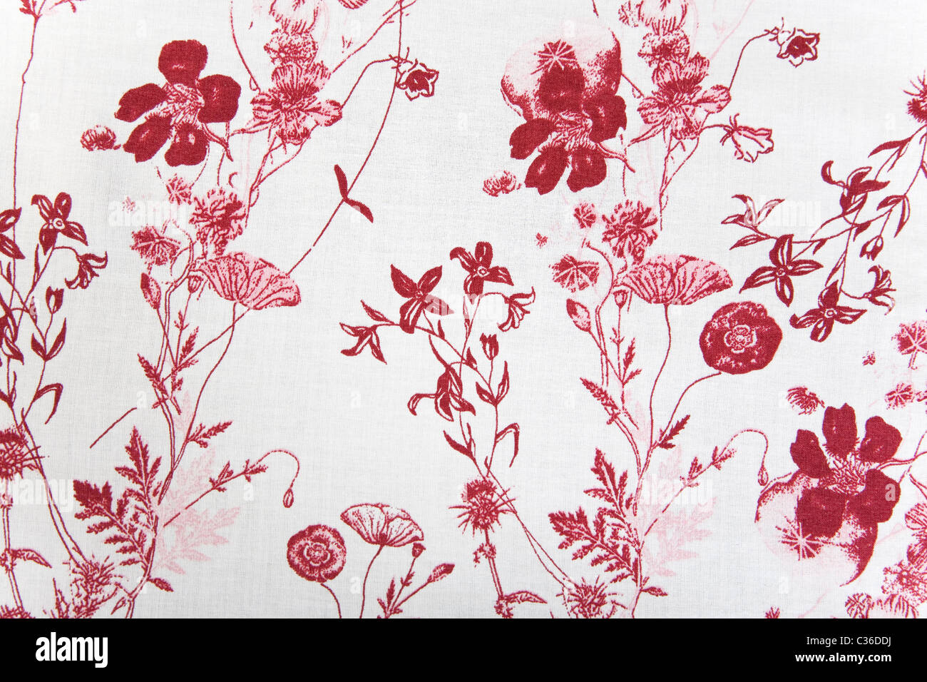 flower fabric texture, red plants on white background - Stock Image