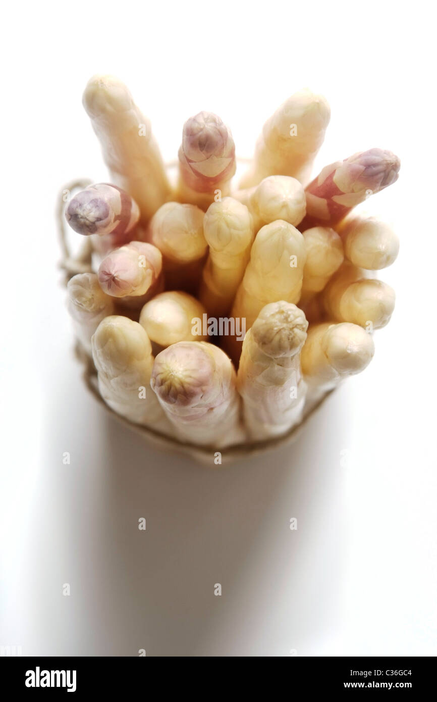 Bunch of white asparagus, standing Stock Photo
