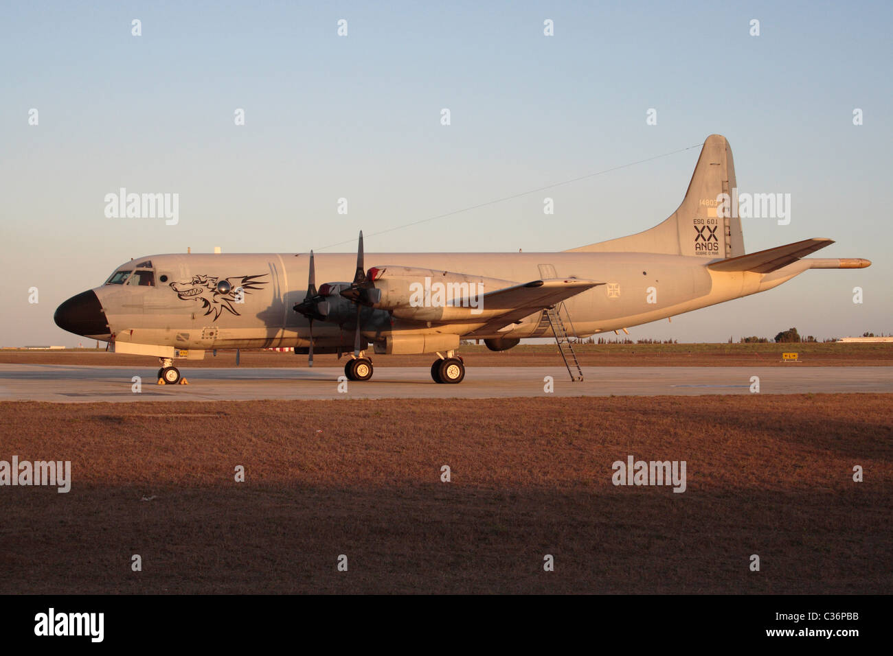 Lockheed P-3P Orion maritime patrol plane of the Portuguese Air Force - Stock Image