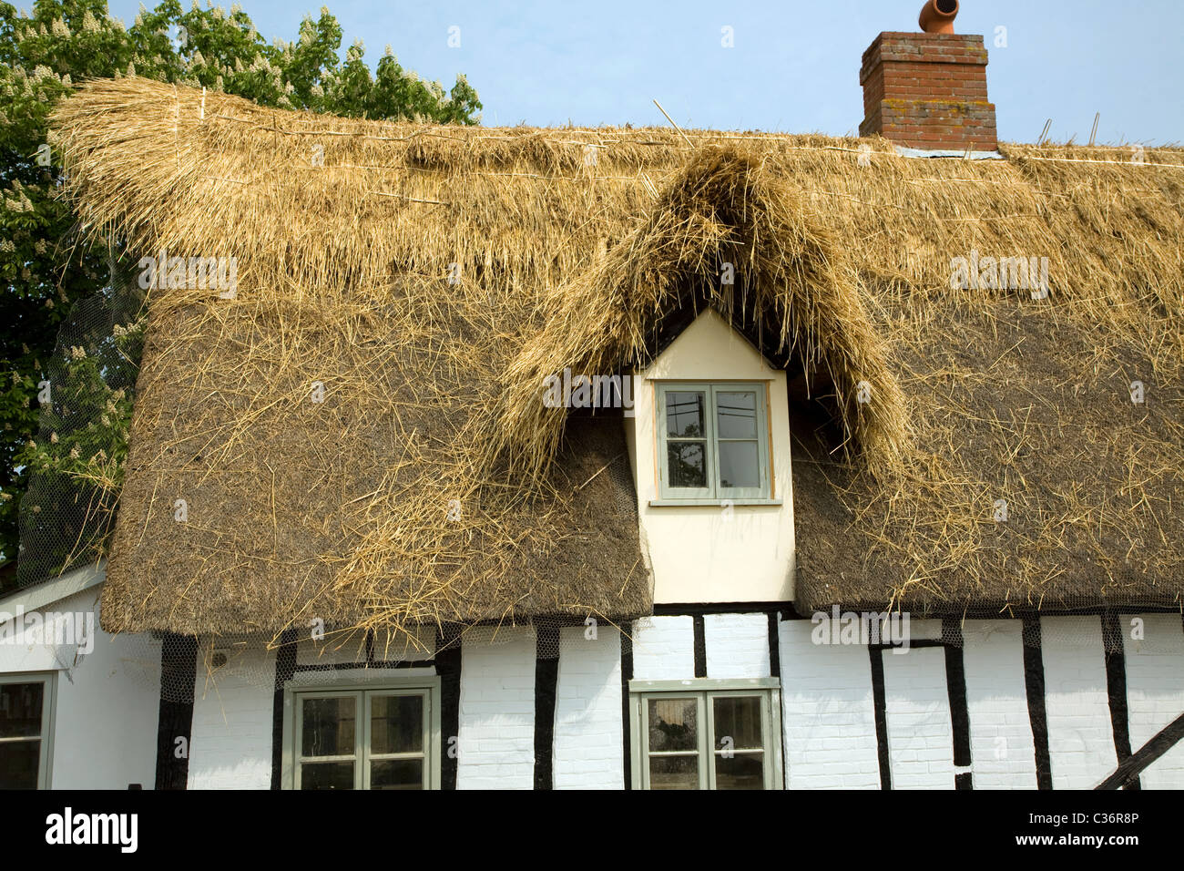 Country cottage being thatched Tattingstone Suffolk England - Stock Image