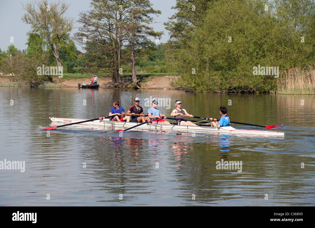 A ladies coxed four rowing on the River Thames at Wallingford Oxfordshire - Stock Image