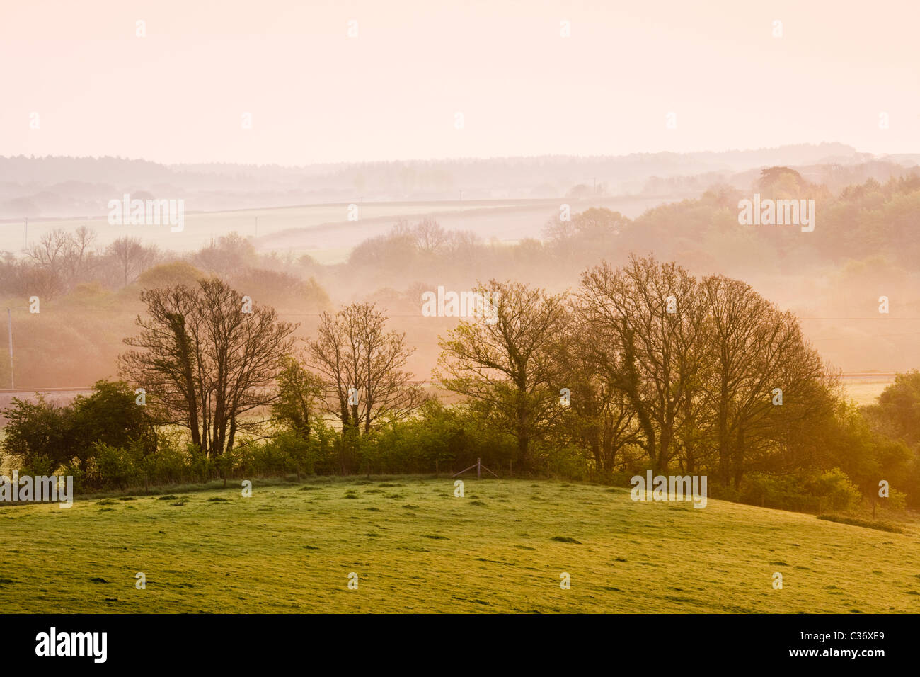Misty dawn in early spring near Corfe Castle village, Dorset, UK Stock Photo