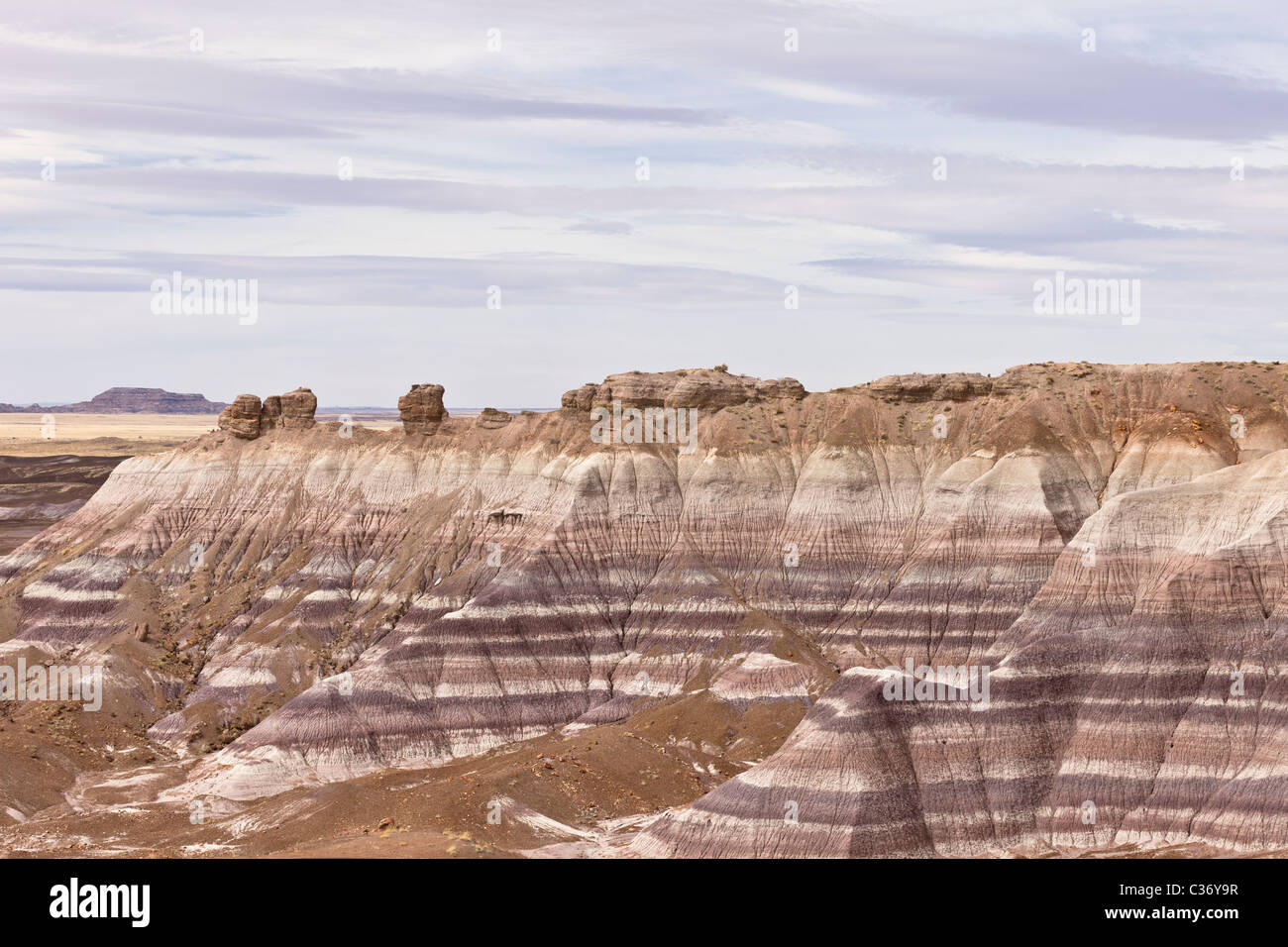 Eroding sedimentary layers form a striking pattern at the Blue Mesa in the Petrified Forest National Park, Arizona, - Stock Image