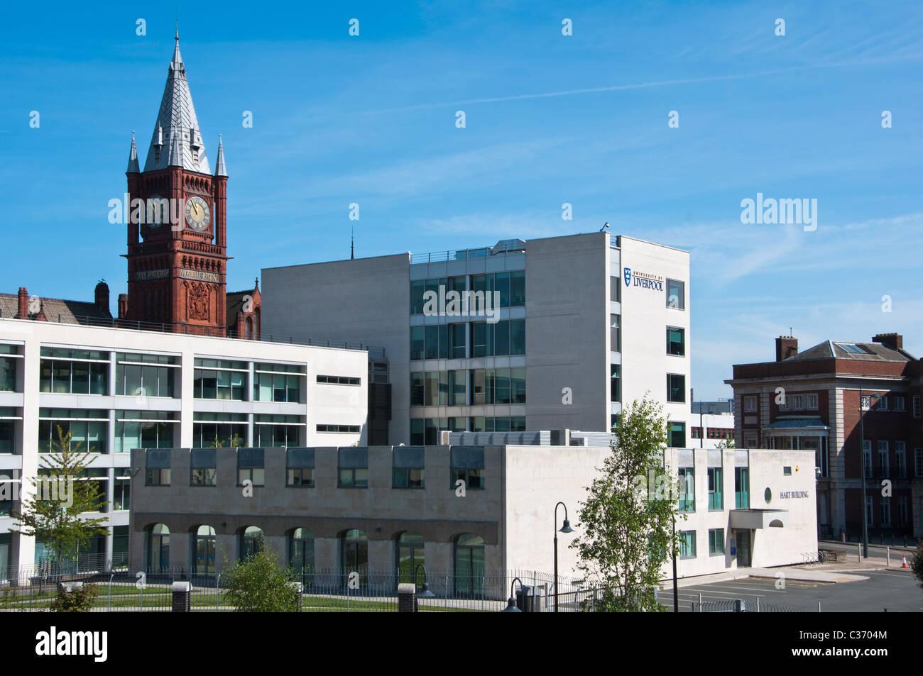 Liverpool University campus. Liverpool. England. - Stock Image