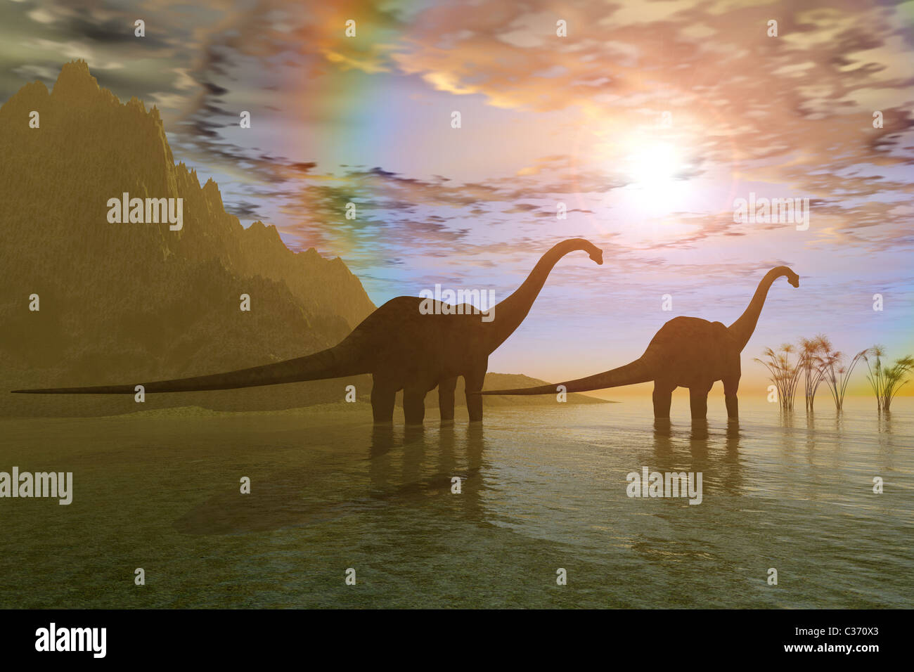 Two Diplodocus dinosaurs wade through shallow water to eat some vegetation. - Stock Image
