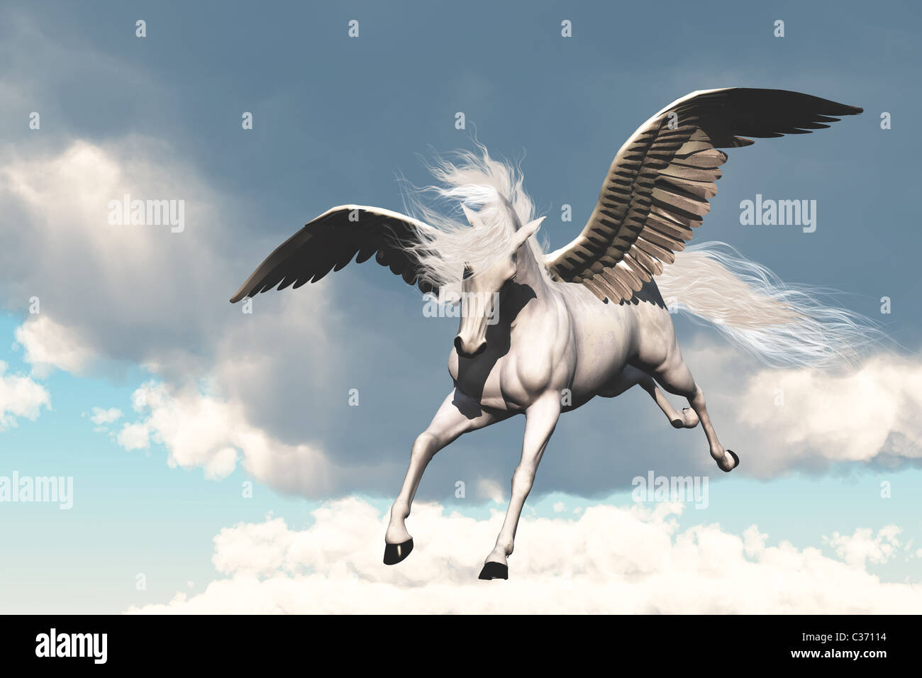 The creature of ancient fable and myth, a beautiful flying white horse. - Stock Image