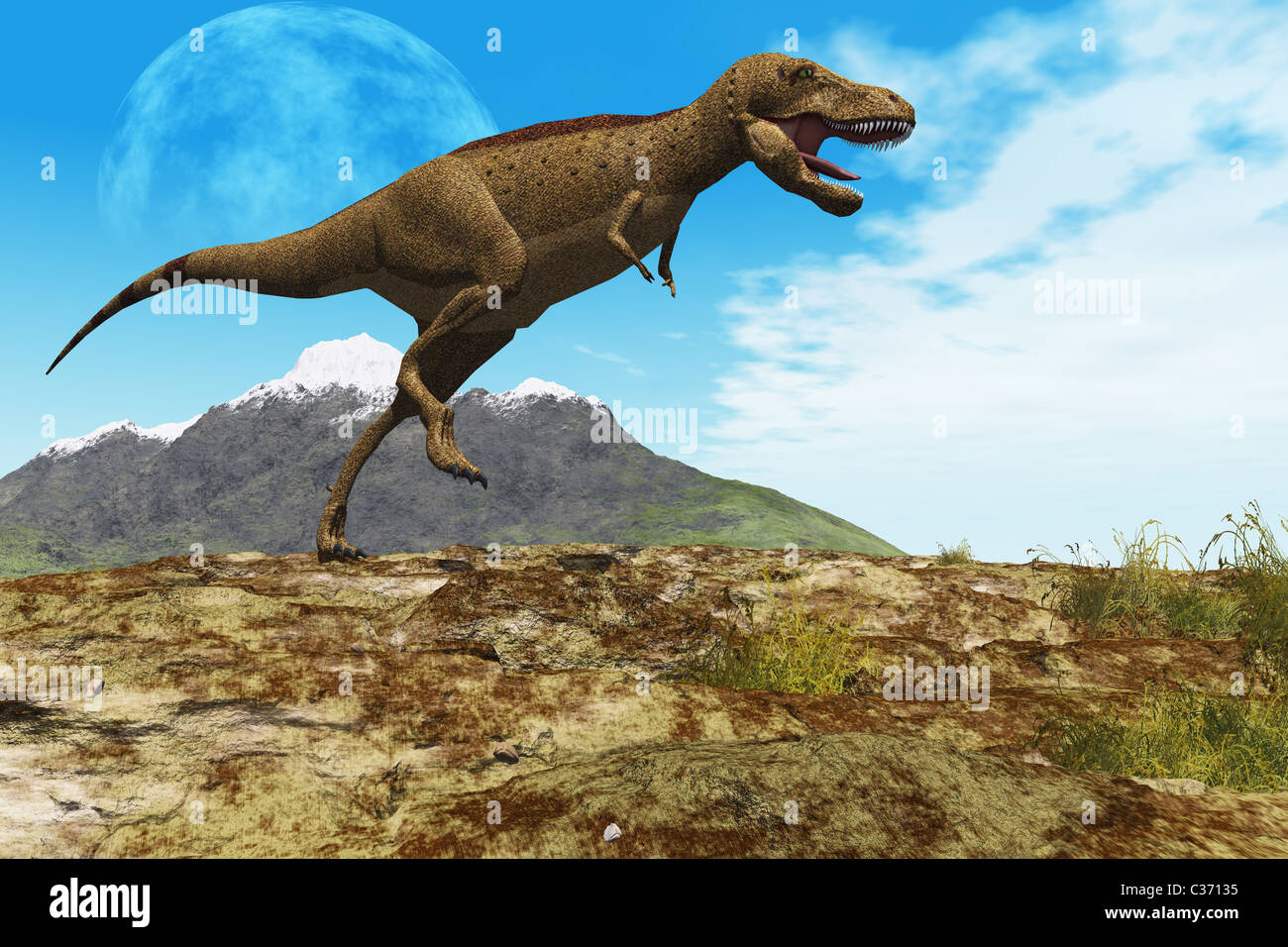 A Tyrannosaurus Rex dinosaur walks through his territory. - Stock Image