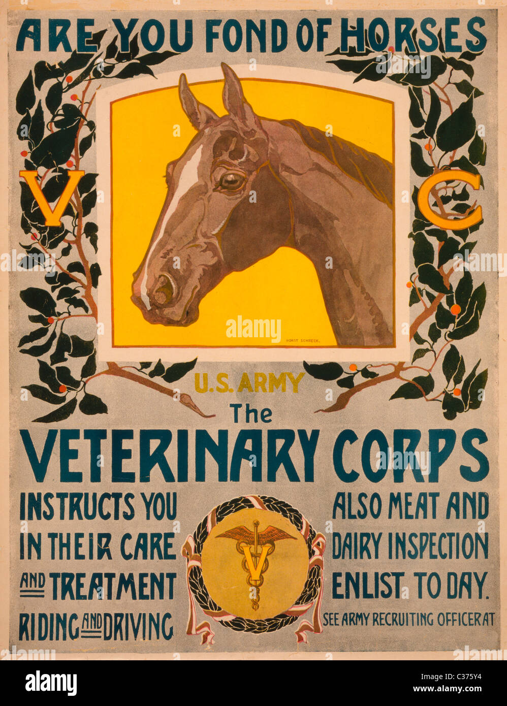Are you fond of horses - U.S. Army - The Veterinary Corps Recruiting Poster 1919 - Stock Image