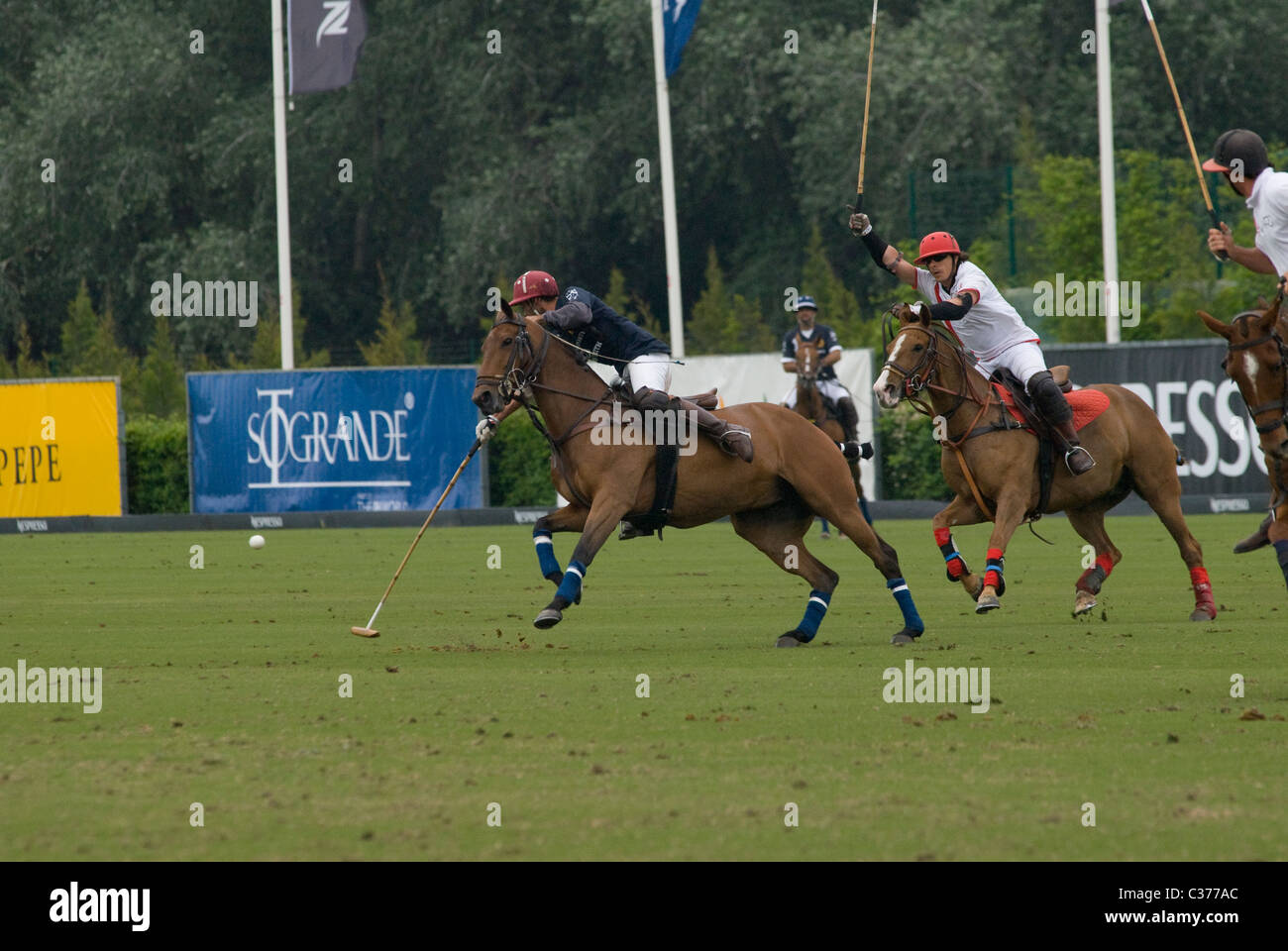 Polo players chasing ball during match - Stock Image