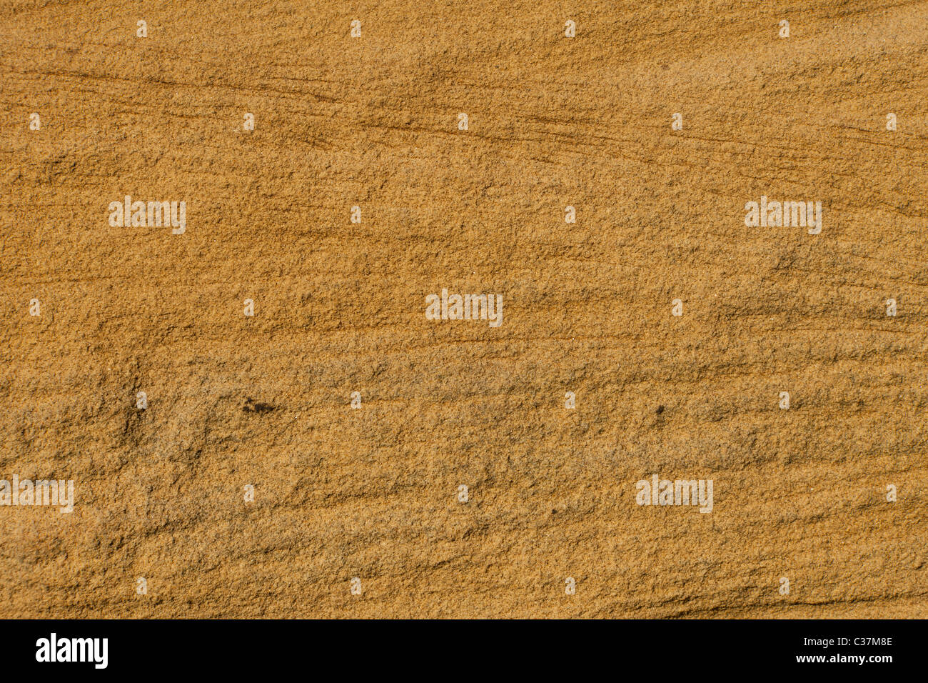 a deep brown sandstone texture ideal for a background - Stock Image