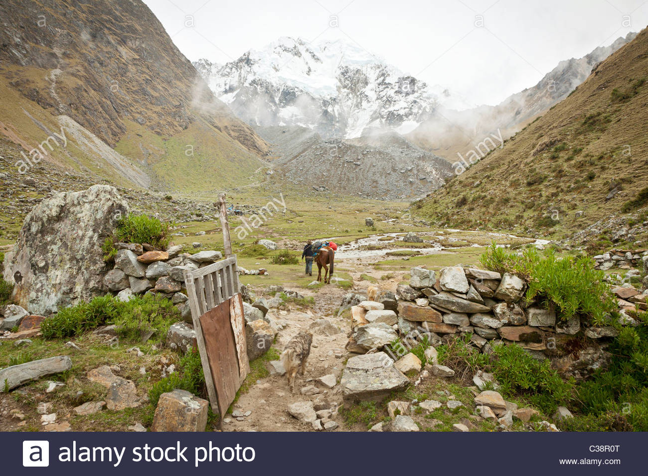Peruvian man with pack-horse sets out on a trail from base camp at Soray to the Salkantay pass, Peru, South America - Stock Image