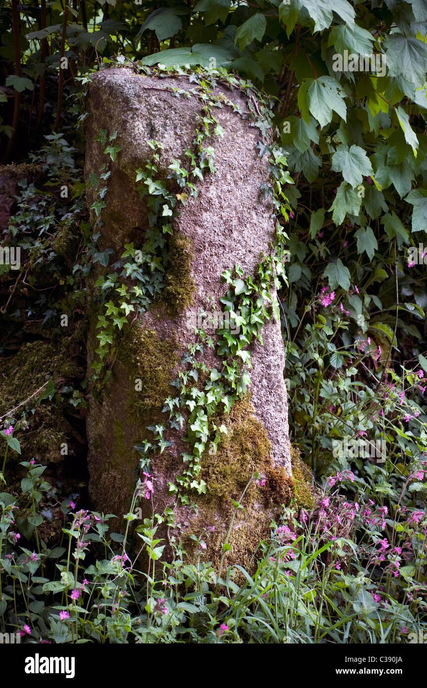 Granite gatepost, old, plants, stone, rotting - Stock Image
