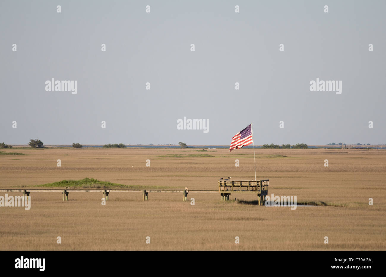 South Carolina salt marsh with pier and American flag - Stock Image