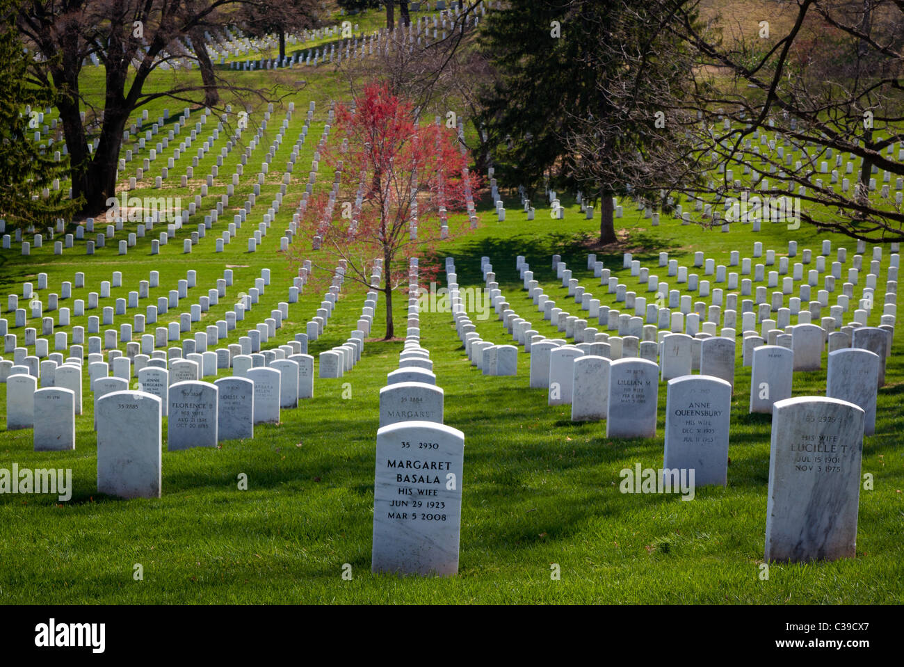 Arlington National Cemetery in Arlington, Virginia - Stock Image