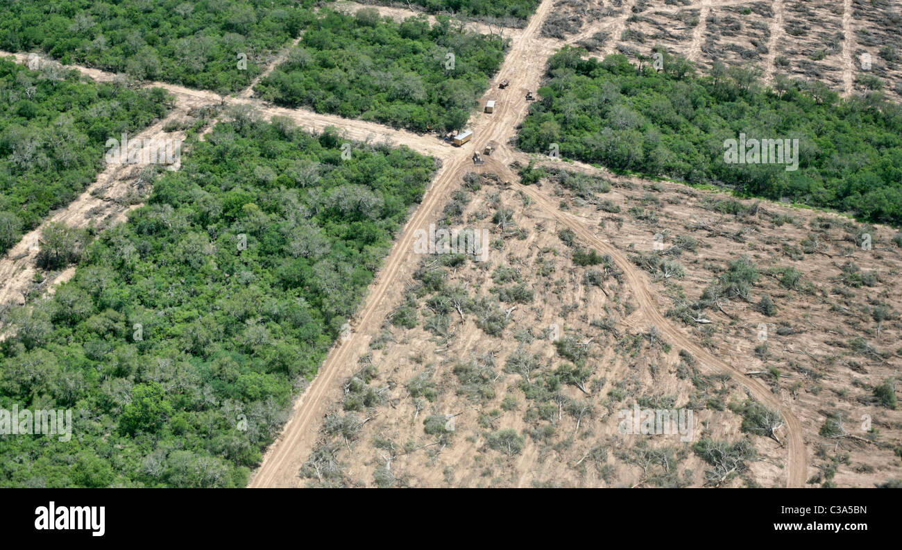 Deforestation in the Gran Chaco near Mariscal Estigarribia, Paraguay - Stock Image