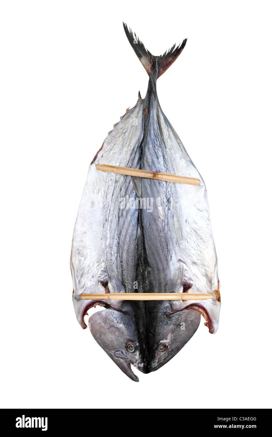 bonito tuna salted dried fish Mediteraranean sarda style Stock Photo