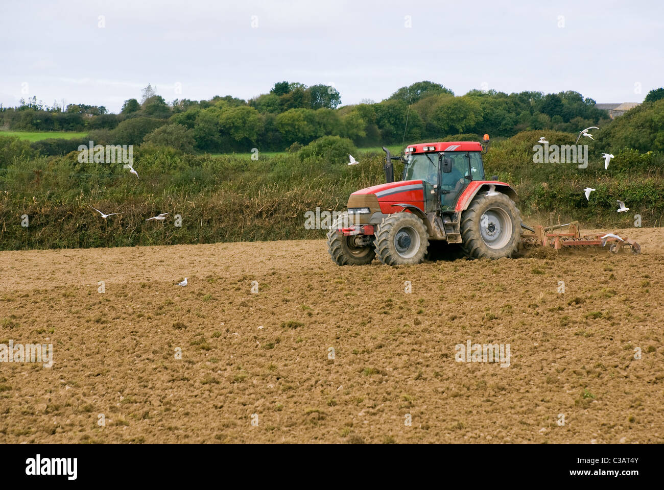 Red tractor in the field. Cornwall, England. - Stock Image