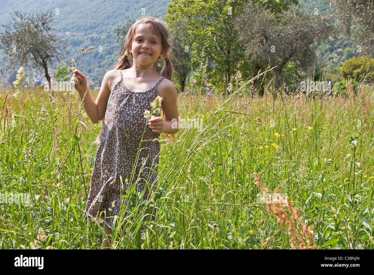 girl on a meadow in spring - Stock Image