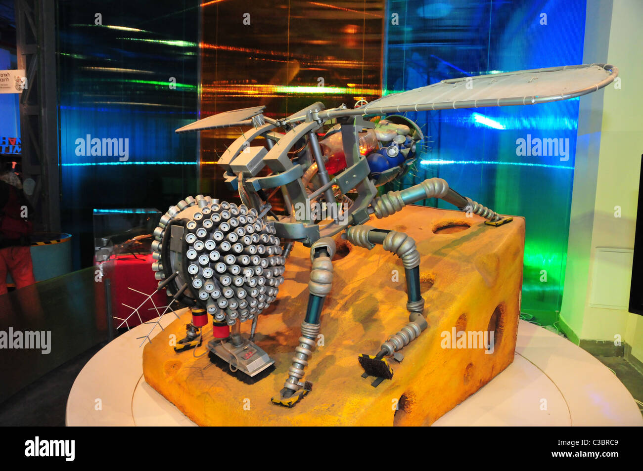 Israel, Haifa, MadaTech The Israel national Museum of Science The Robotic World exhibition. House fly robot Stock Photo