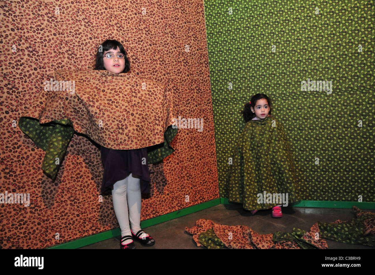 Israel, Haifa, MadaTech The Israel national Museum of Science Camouflage and disguise - Stock Image