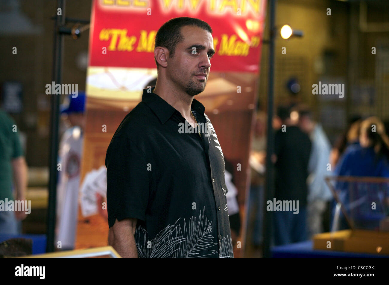 BOBBY CANNAVALE DIMINISHED CAPACITY (2008) - Stock Image