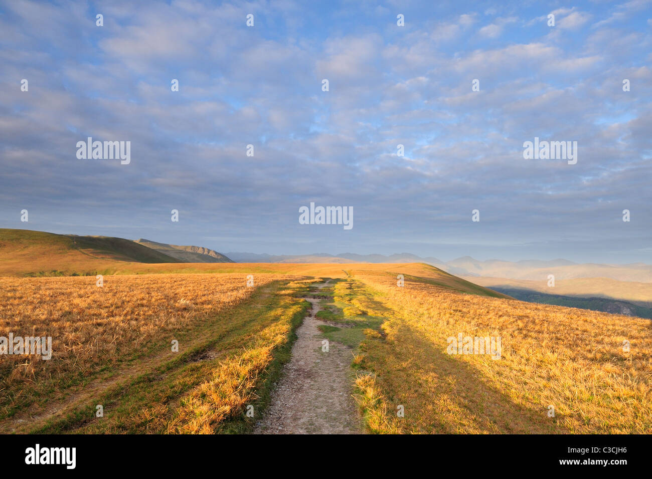 Morning sunlight on footpath on Watsons Dodd in the English Lake District - Stock Image