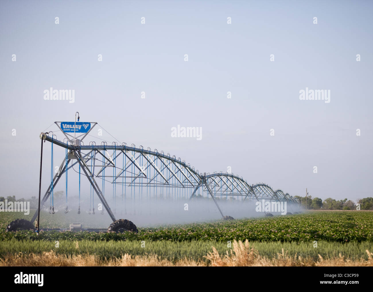 Agricultural crop irrigation system - Stock Image