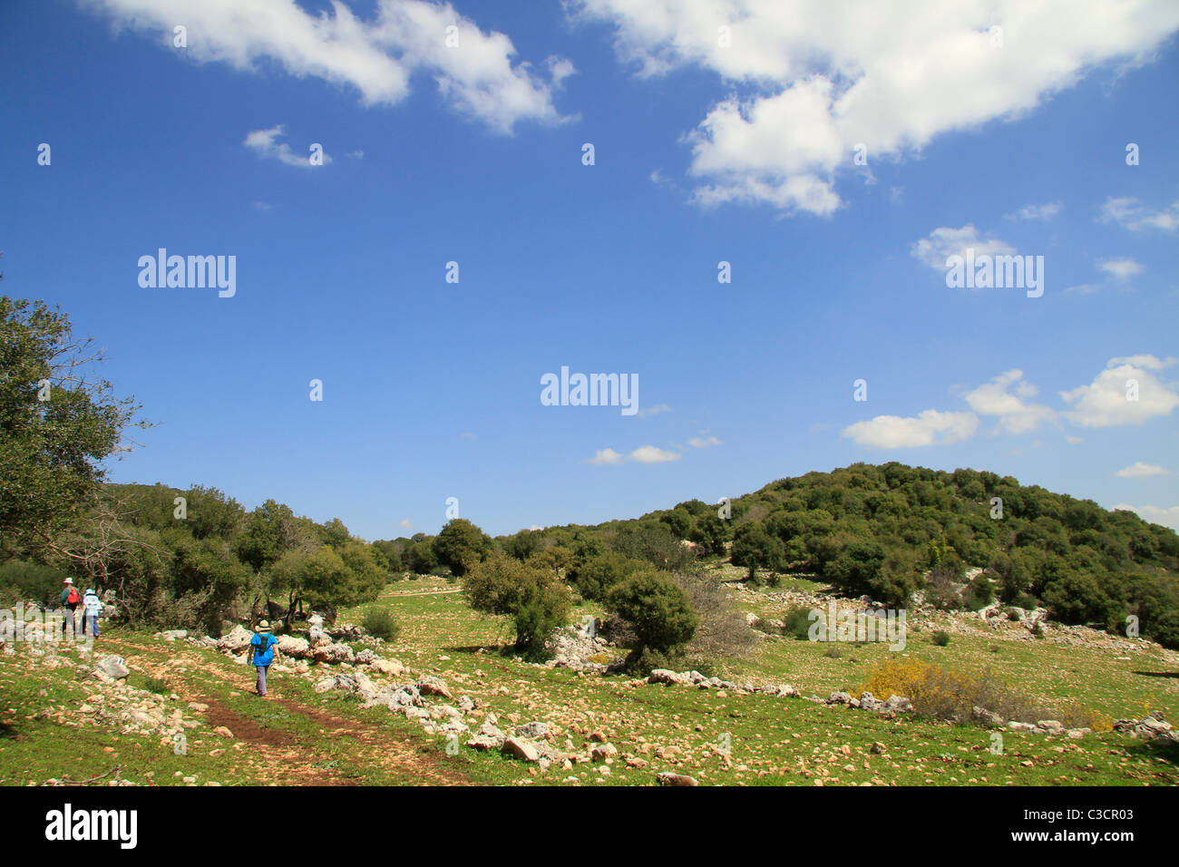 Israel, Upper Galilee, the trail to Hamikdash cave Stock Photo