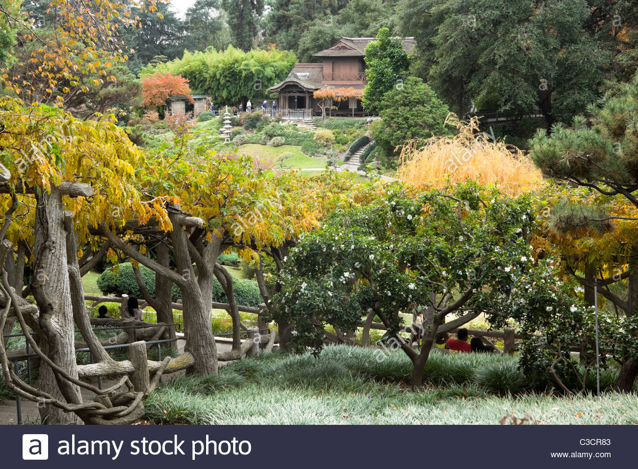Japanese Garden At The Huntington Botanical Gardens San Marino