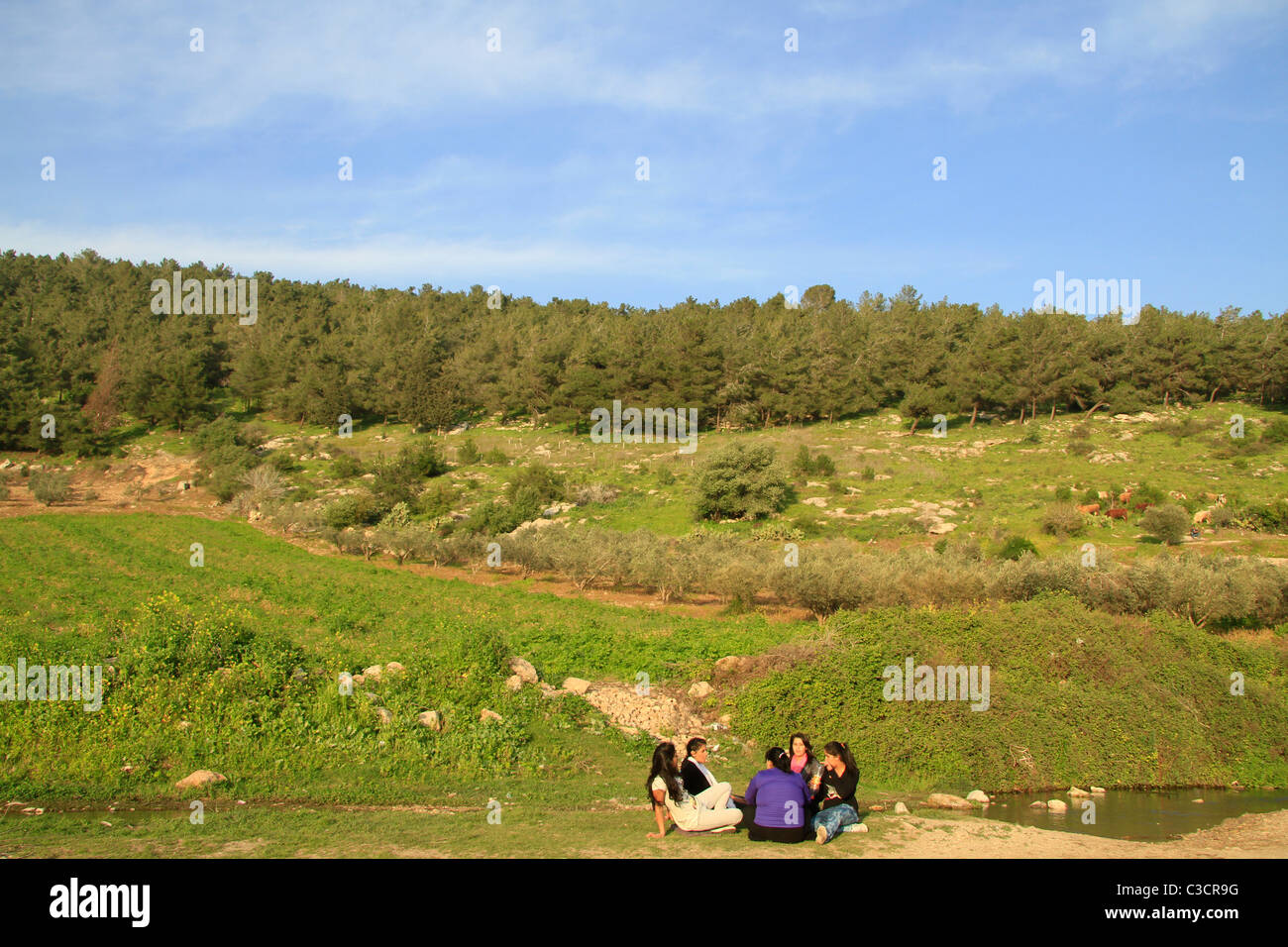 Israel, Lower Galilee, Ein Ivka in Wadi Zippori Stock Photo