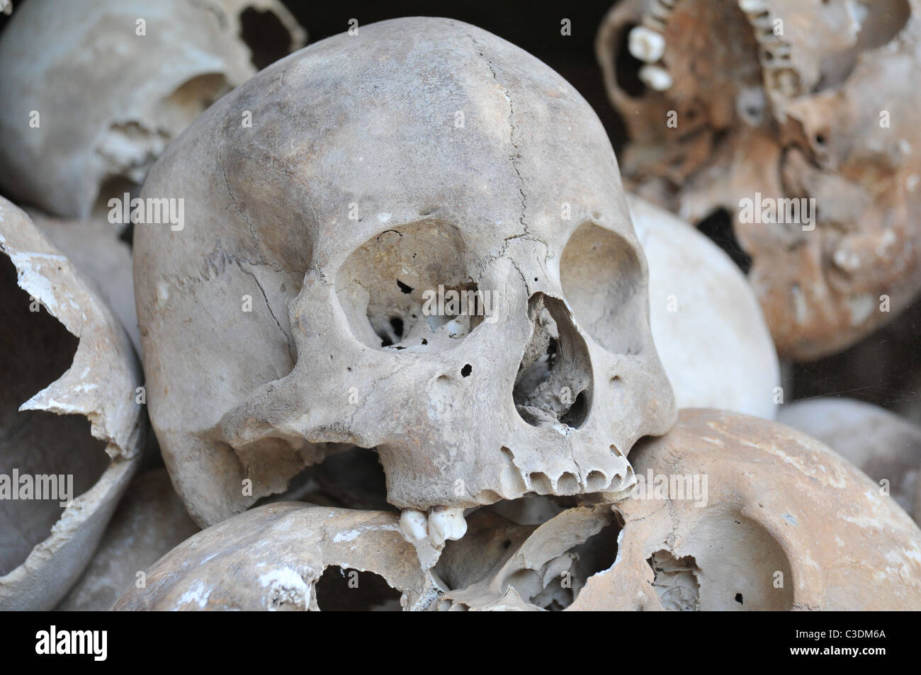 The Skulls from the killing fields in Cambodia - Stock Image
