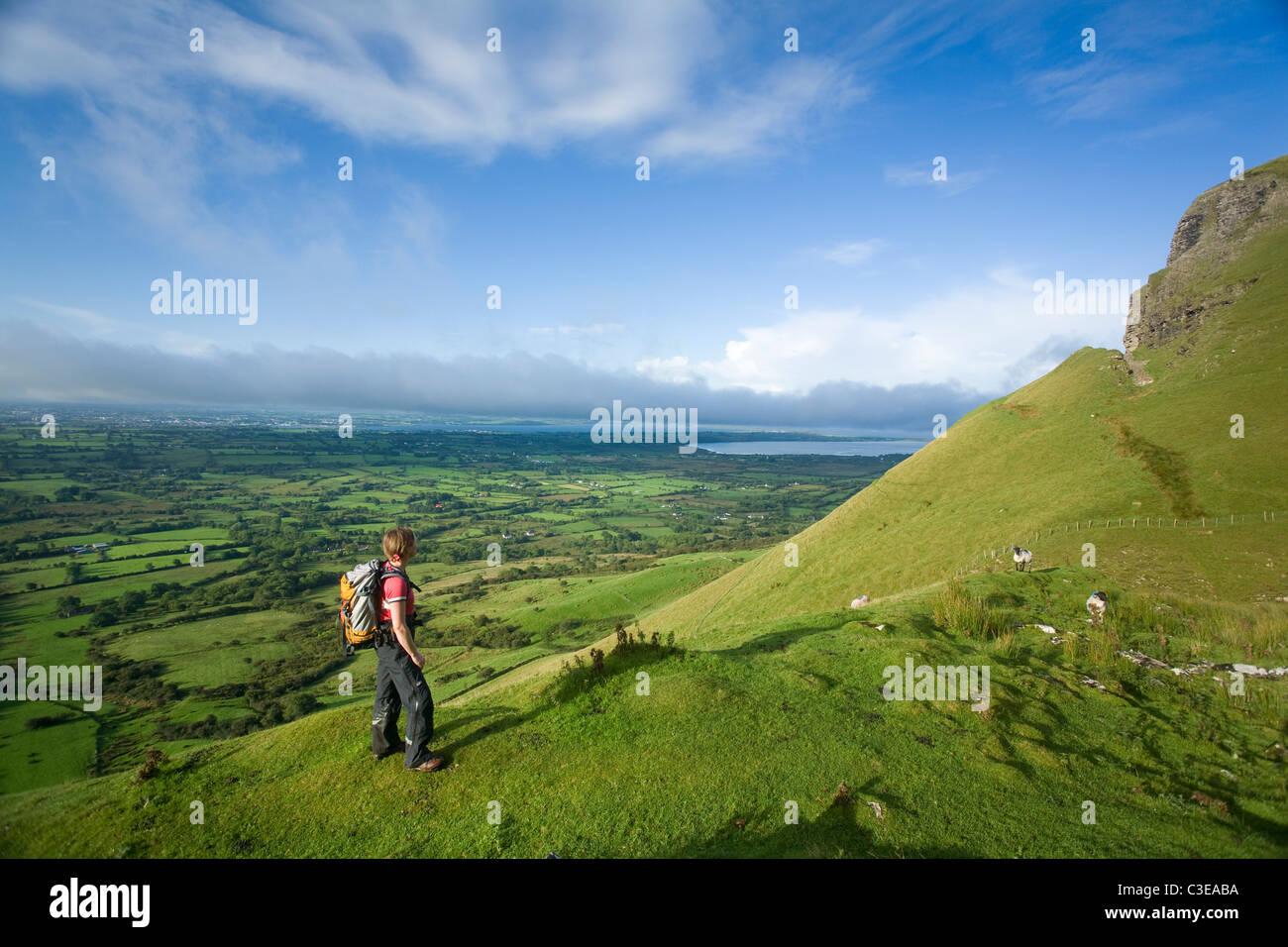 Walker ascending Benbulbin via the Kings Gully track, County Sligo, Ireland. - Stock Image