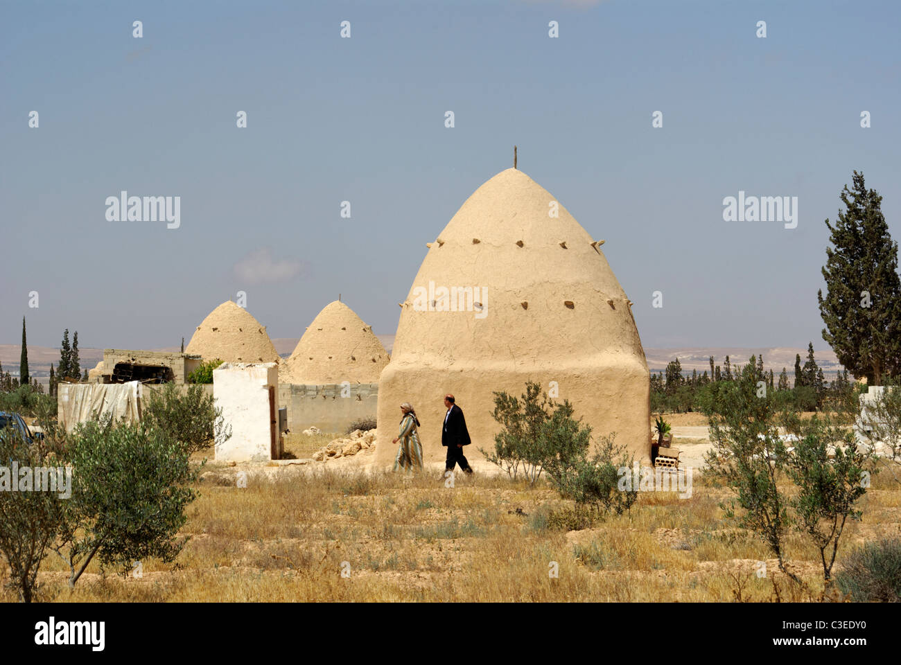 Beehive houses between Palmyra and Homs, Syria - Stock Image