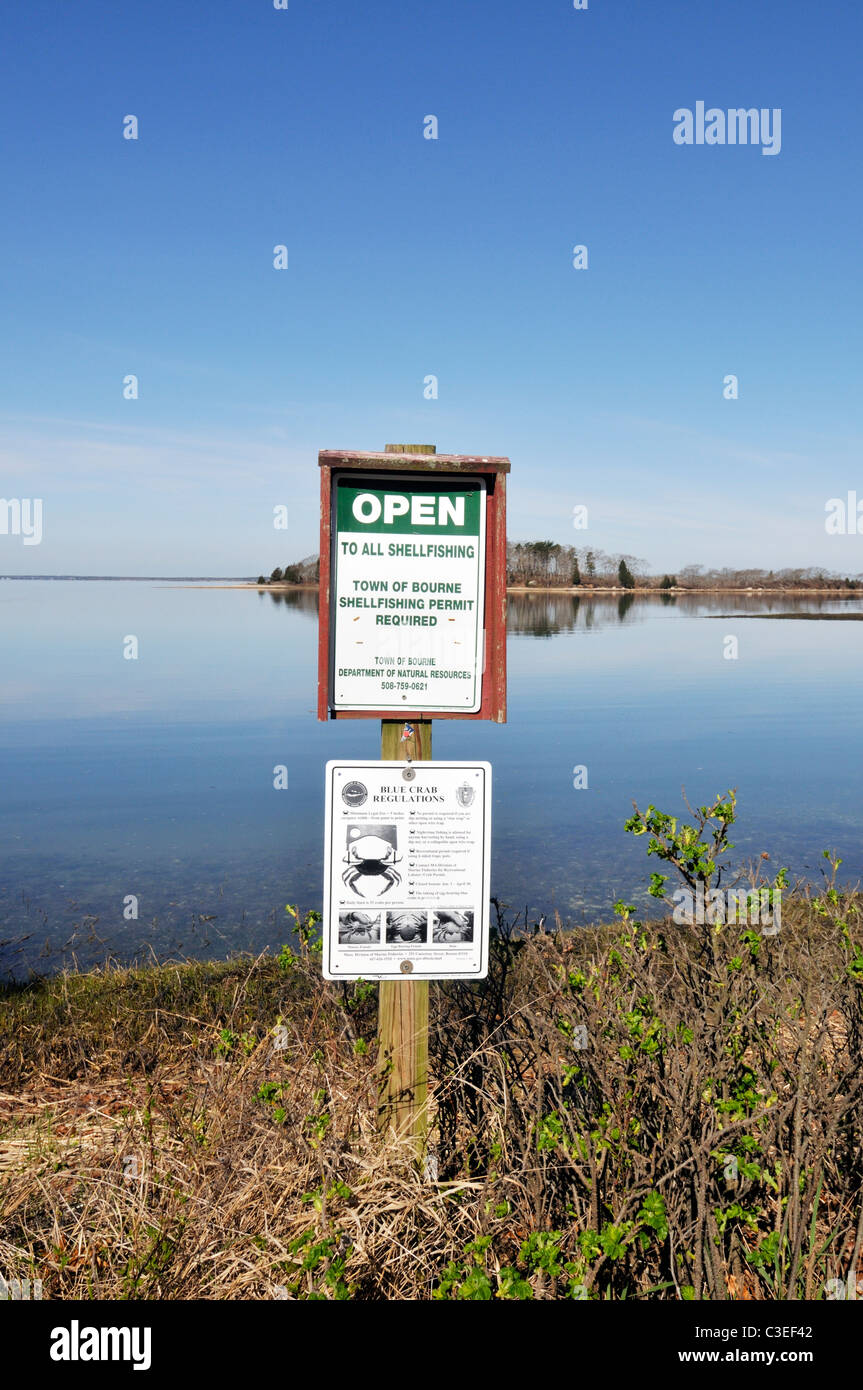 Open to all shellfishing sign and bluecrab regulations signs posted at oceans edge on Cape Cod, USA - Stock Image