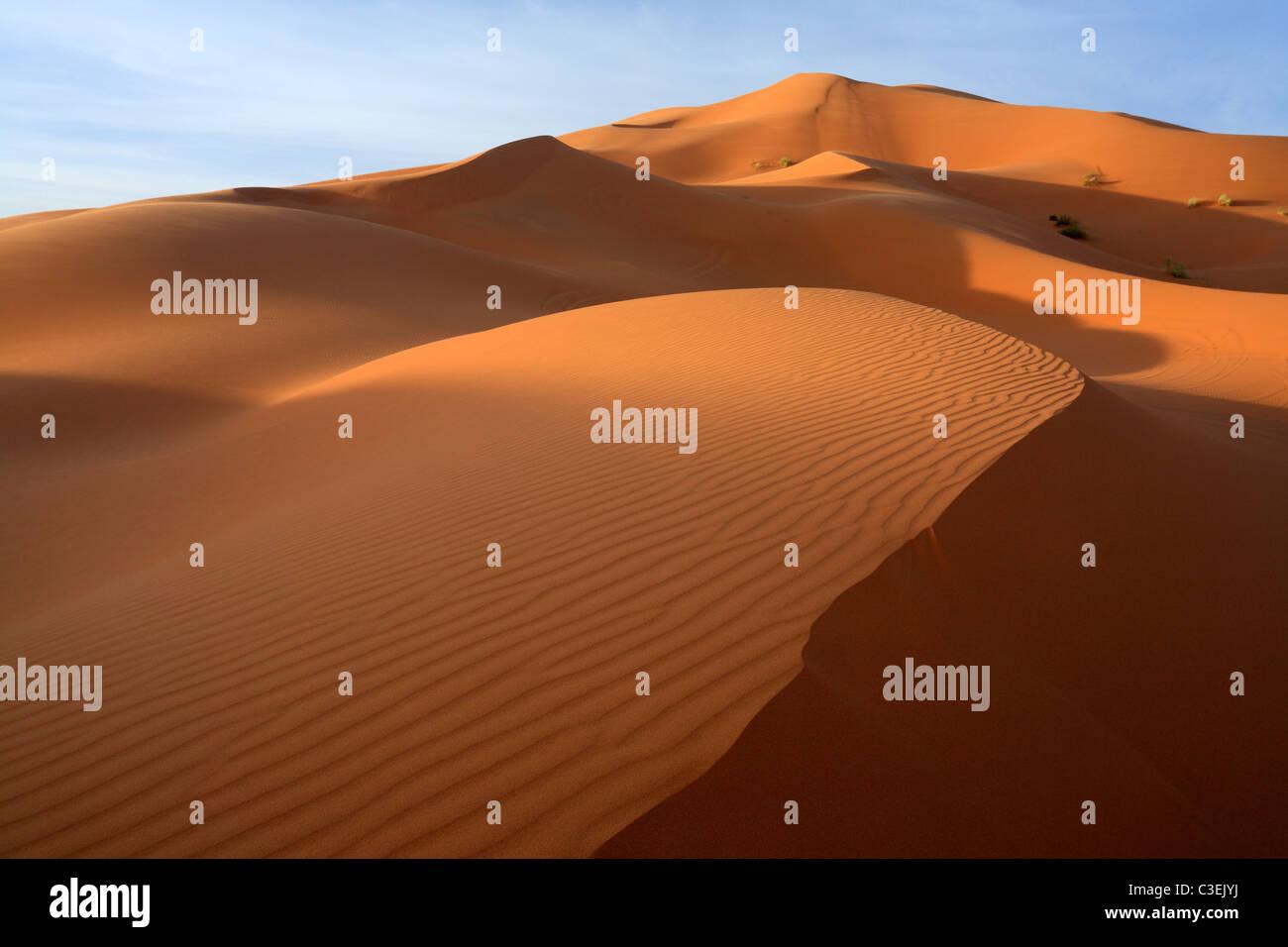 Early morning light on the massive dunes of Erg Chebbi near Merzouga in Morroco Stock Photo